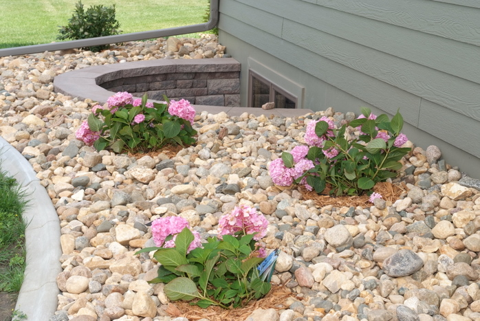 Landscape Stone Ground Cover : Scaping photo idea landscaping ground cover
